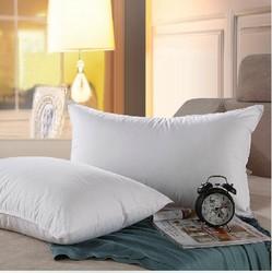 厂家直销 浩博酒店专用羽绒枕芯 宾馆防羽布羽丝绒枕芯 羽绒枕