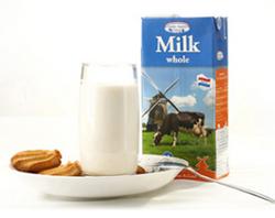 德利乐 荷兰纯牛奶