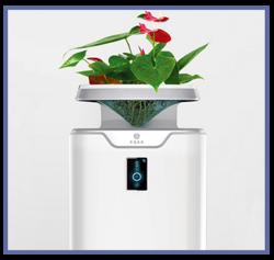生态空气净化器