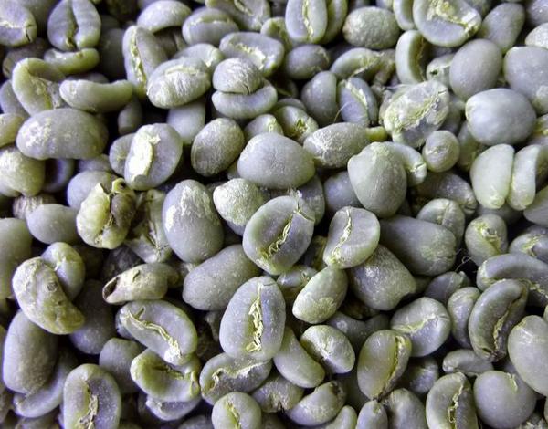 Sumatra Mandheling Coffee 苏门答腊 曼持宁 咖啡生豆