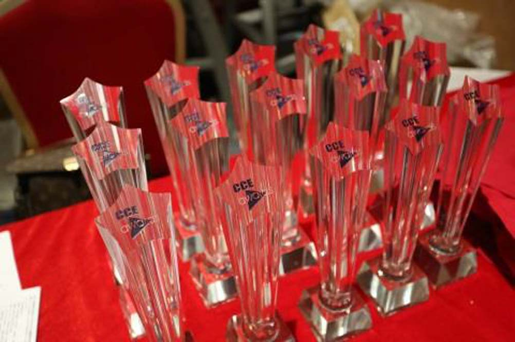 Chinese Cleaning Diamond Award