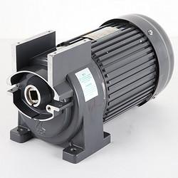 台式绞肉机减速电机