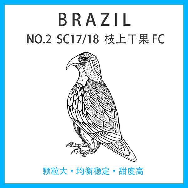 巴西 NO.2 SC17/18 枝上干果 FC (内袋) 日晒