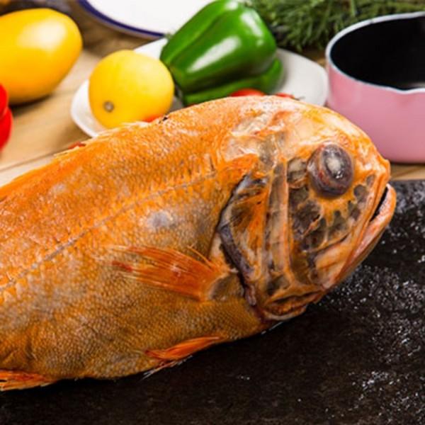 大西洋胸棘鲷(俗称:长寿鱼)