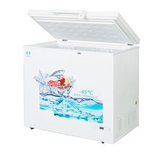 低温冷柜DW-45-215