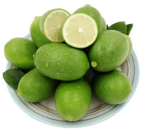 果园基地 香水柠檬