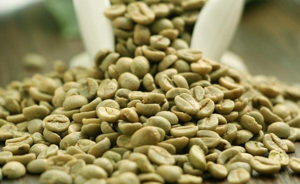 上海熠果国际贸易有限公司 咖啡白豆