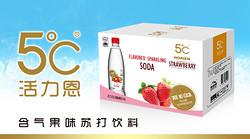 HORIEN5℃活力恩含气果味苏打饮料